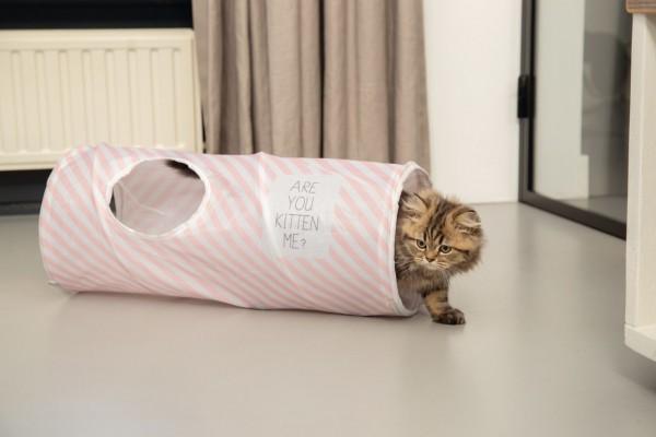 Beeztees Kitten Spieltunnel Nini