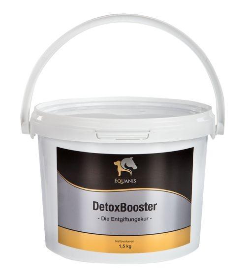 DetoxBooster – Entgiftungskur