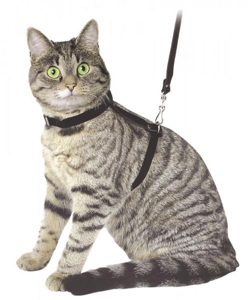 Katzengeschirr mit Leine aus Velours