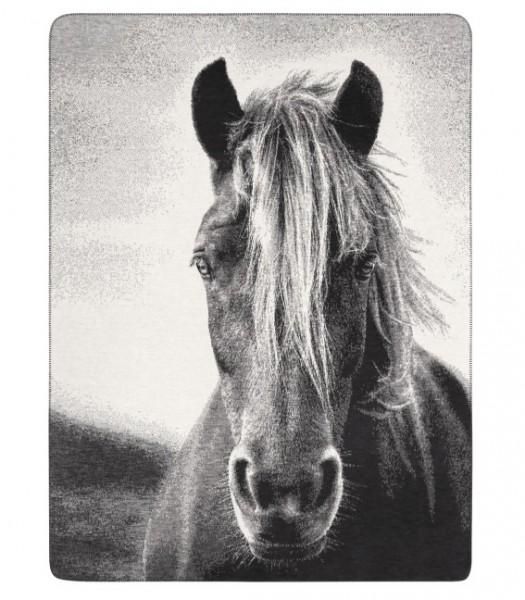 kuscheldecke-pferd-meinhaustiershop-02