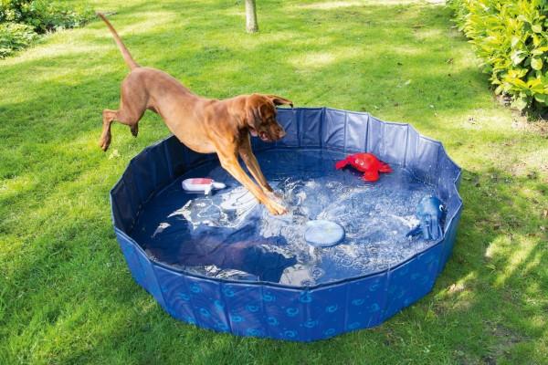 Hundepool Doggy Pool Wave