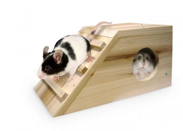 Holz Schlafhütte Cabana für Meerschweinchen