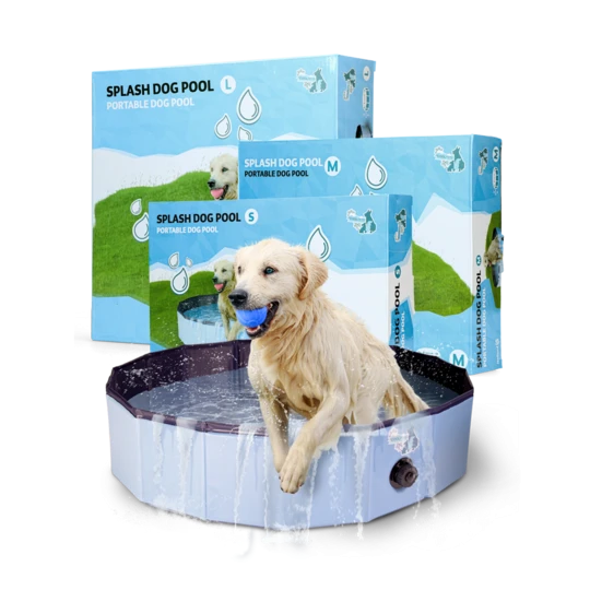 Hunde Pool Schwimmbad