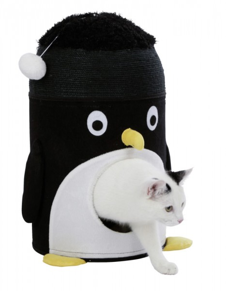Pinguin Kratzhöhle