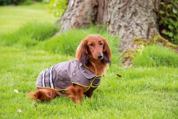 Beeztees Hunde-Regenmantel Seja