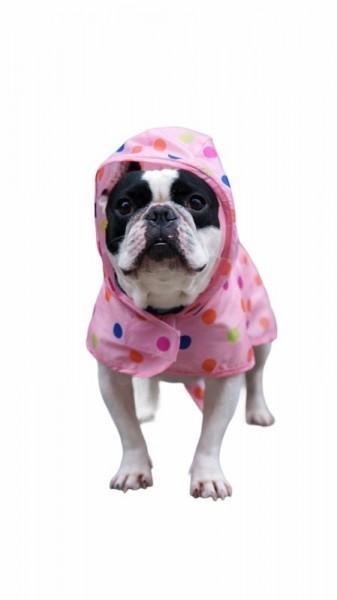 Regenmantel Pink Dots für Hunde