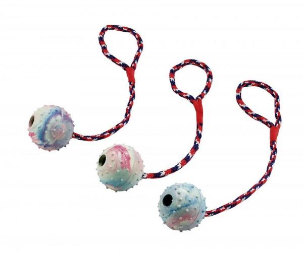 Hundespielzeug Seil am Ball