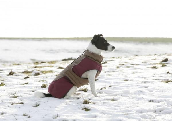 Warmer Hundemantel Royal Pets für den Winter