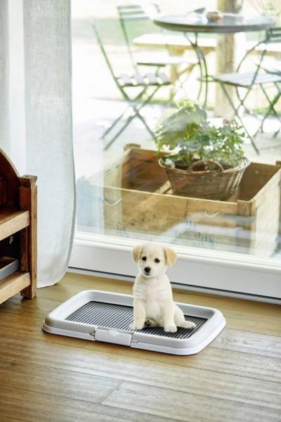 Welpentoilette Puppy Training Set