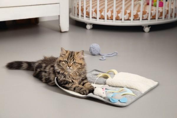 Beeztees Kitten Spielplatz Weezy