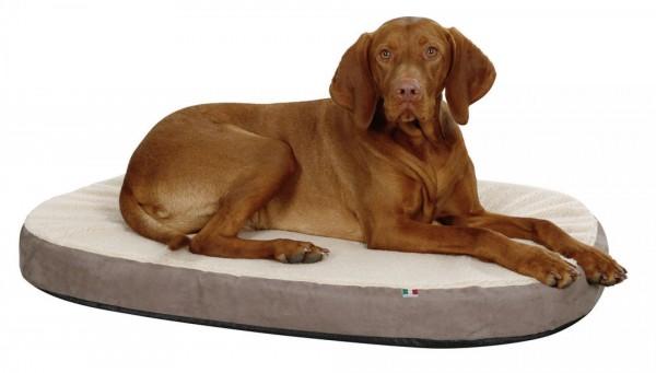 Hundekissen mit Memory-Foam schont die Gelenke