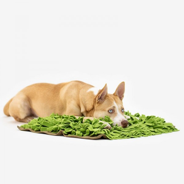 Knauder´s Best Schnüffelrasen - Schnüffelspielzeug für Hunde
