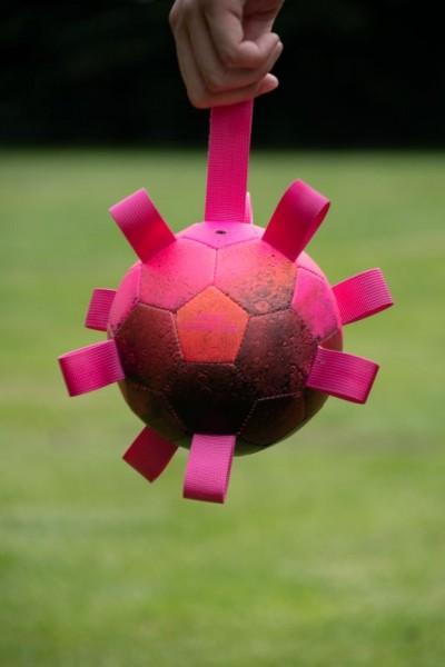 Hypernova Hundespielball