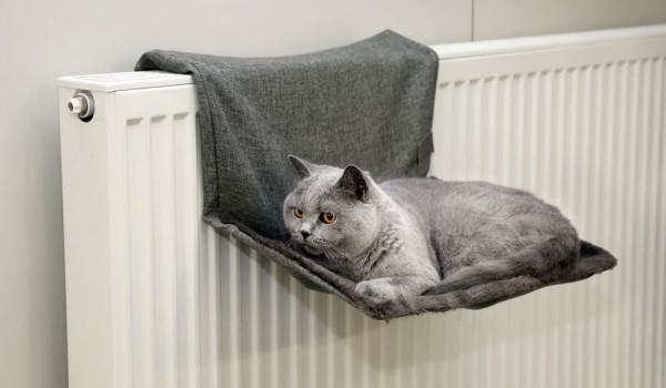 Katzenhängematte Paradies Heizkörper