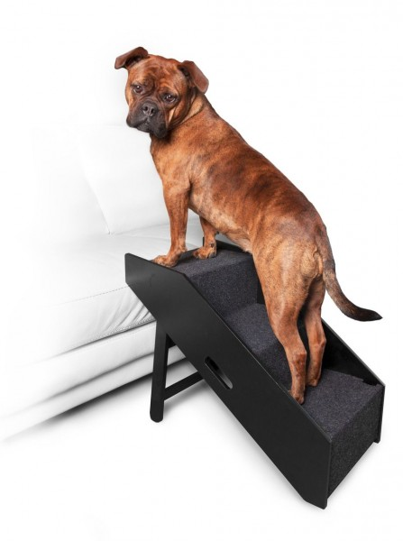 Hundeplanke und Treppe