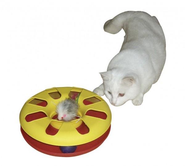 Katzenspielzeug Racing Wheel