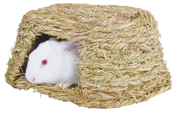 Natürliches Grashaus
