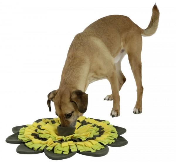 Schnüffelteppich Sunflower