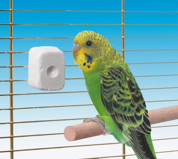 pickstein-jod-vogelwetzstein-meinhaustiershop