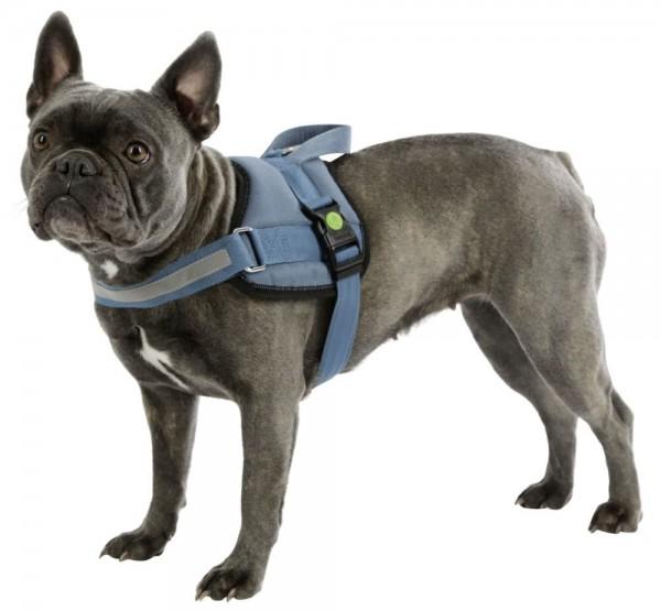 Hundegeschirr Maestro 2.0