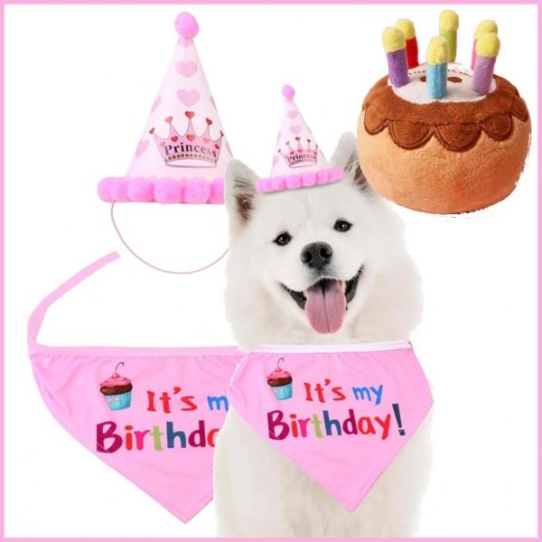 Geburtstags Set für Hunde